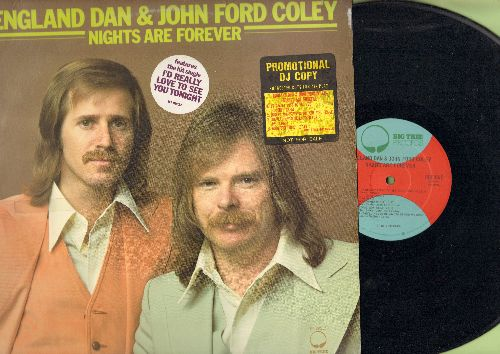 England Dan & John Ford Coley - Nights Are Forever: I'd Really Love To See You Tonight, Lady, Everything's Gonna Be Alright, Long Way Home (Vinyl STEREO LP record, DJ advance pressing) - EX8/EX8 - LP Records