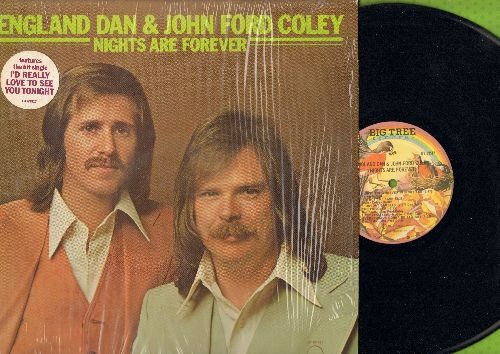 England Dan & John Ford Coley - Nights Are Forever: I'd really Love To See You Tonight, Lady, Everything's Gonna Be Alright, Long Way Home (Vinyl STEREO LP record) - M10/NM9 - LP Records