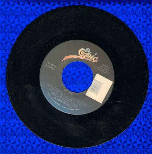 Estefan, Gloria - Megamix/I See Your Smile - EX8/ - 45 rpm Records