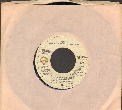 Exile - You're Good For Me/Let's Do It All Over Again (with Warner Brothers company sleeve) - EX8/ - 45 rpm Records