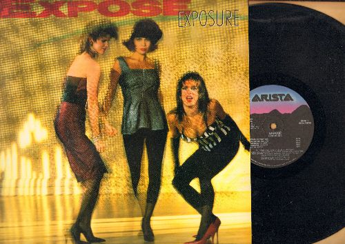 Expose - Exposure: Come Go With Me, Seasons Change, Point Of No Return, You're The One I Need (vinyl STEREO LP record) - NM9/NM9 - LP Records
