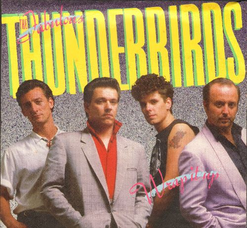 Fabulous Thunderbirds - Wrap It Up (I Take It)/True Love (with picture sleeve) - NM9/EX8 - 45 rpm Records