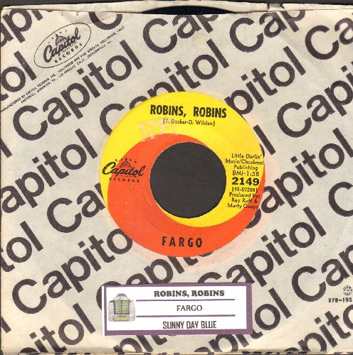 Fargo - Robins, Robins/Sunny Day Blue (RARE Psychdelic 2-sider with vntage Capitol company and juke box label) - NM9/ - 45 rpm Records