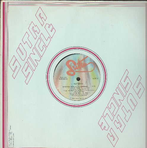 Fat Boys - Can You Feel It (6:38 minutes)/Can You Feel It (7:01 minutes Instrumental) (12 inch vinyl Maxi single with Sutra company cover) - EX8/ - Maxi Singles