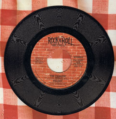 Felony - The Fanatic (FANTASTIC Alternative Rock Sound!)/The Girl Ain't Straight - NM9/ - 45 rpm Records