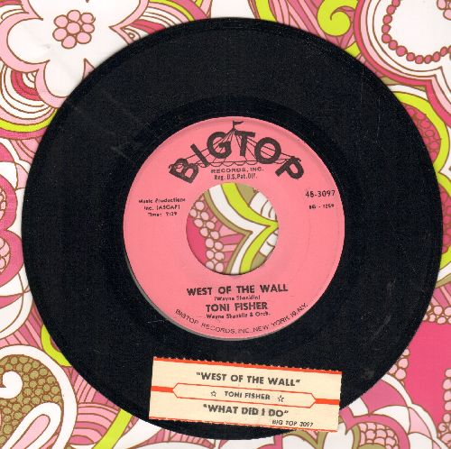 Fisher, Toni - West Of The Wall (Novelty Record made popular immediately after the Berlin Wall was erected to prevent people from fleeing  the Communist  Eastern part of town)/What Did I Do (pink label first issue with juke box label) - EX8/ - 45 rpm Reco