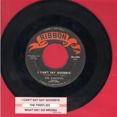 Fireflies - I Can't Say Goodbye/What Did I Do Wrong (with juke box label) - EX8/ - 45 rpm Records