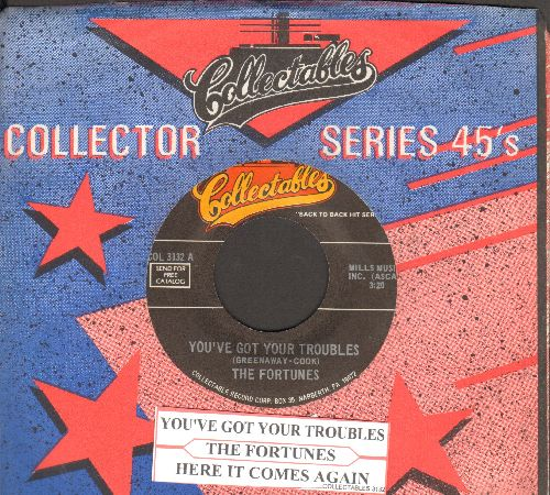 Fortunes - You've Got Your Troubles/Here It Comes Again (double-hit reissue with juke box label and company sleeve) - NM9/ - 45 rpm Records