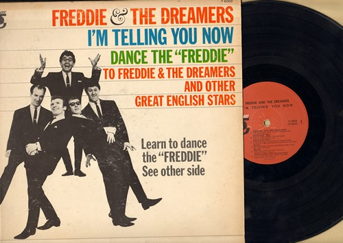 Freddie & The Dreamers, Heinz, Linda Laine & The Sinners, others - English Singing Sensations: I'm Telling You Now, Questions I Can't Anwer, The Beating Of My Heart, Low Grades & High Fever (vinyl MONO LP record) - EX8/VG7 - LP Records
