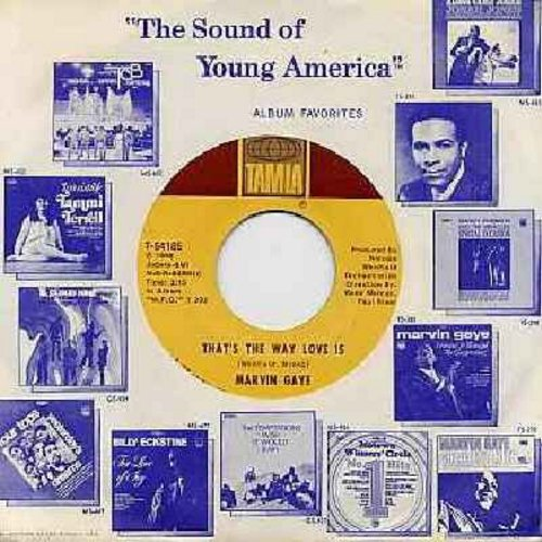 Gaye, Marvin - That's The Way Love Is/Gonna Keep On Tryin'  (with Motown company sleeve) - EX8/ - 45 rpm Records