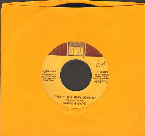 Gaye, Marvin - That's The Way Love Is/Gonna Keep On Tryin'  - EX8/ - 45 rpm Records