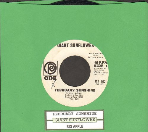 Giant Sunflower - February Sunshine/Big Apple (with juke box label) - VG7/ - 45 rpm Records