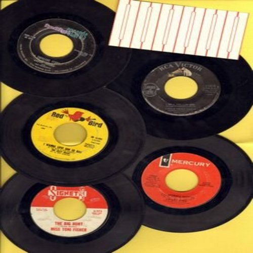 Fisher, Miss Toni, Lesley Gore, Jelly Beans, Little Peggy March, Kathy Young - Girl-Sound 5-Pack: 5 vintage original 45rpm records, all in very good or better condition. Hit titles include The Big Hurt, A Thousand Stars, I Will Follow Him, California Nigh