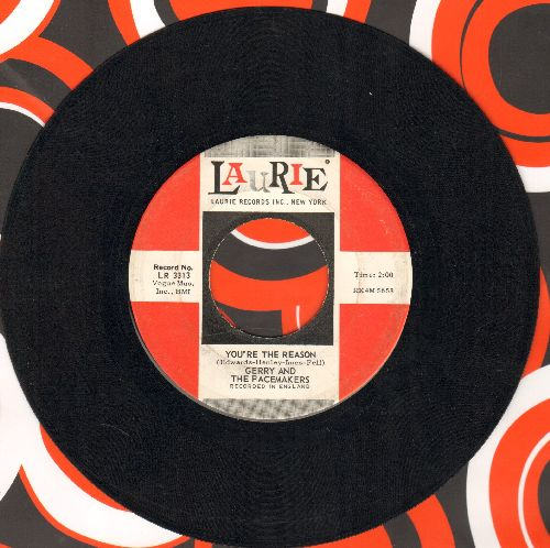 Gerry & The Pacemakers - You're The Reason/Give All Your Love To Me - EX8/ - 45 rpm Records