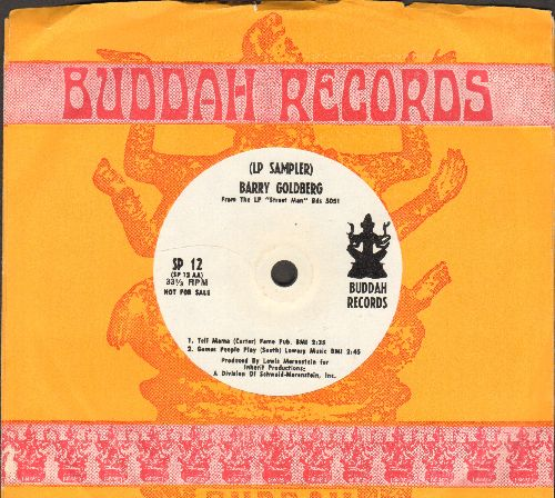 Goldberg, Barry - Barry Goldberg LP Sampler on 33 rpm record with small spindle hole, DJ Pressing with Buddah company sleeve) - NM9/ - 45 rpm Records