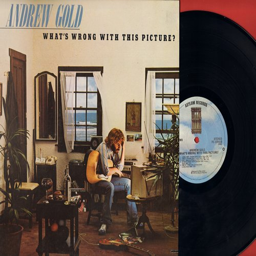 Gold, Andrew - What's Wrong With This Picture?: Lonely Boy, Do Wah Diddy, Stay, One Of Them Is Me (Vinyl STEREO LP record) - M10/EX8 - LP Records