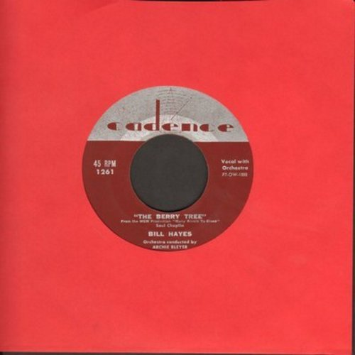 Hayes, Bill - The Berry Tree/Blue Black Hair - VG7/ - 45 rpm Records