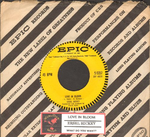 Hickey, Ersel - Love In Bloom/What Do You Want? (FANTASTIC Teen Idol 2-sider with juke box label and Epic company sleeve) - NM9/ - 45 rpm Records