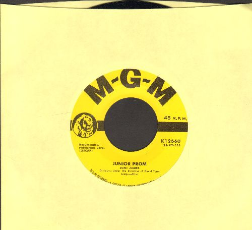 James, Joni - I Give You My Word/Never 'Till Now (with vintage MGM company sleeve) - M10/ - 45 rpm Records