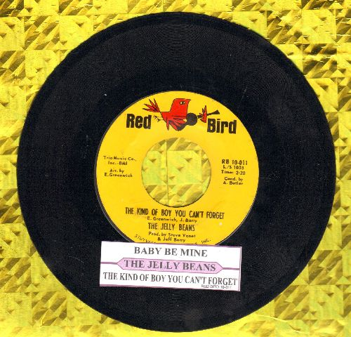 Jelly Beans - The Kind Of Boy You Can't Forget/Baby7 Be Mine (with juke box label) (wol) - EX8/ - 45 rpm Records