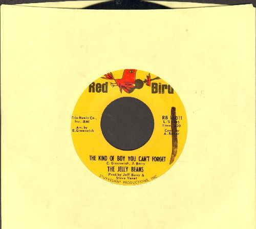Jelly Beans - The Kind Of Boy You Can't Forget/Baby7 Be Mine (wol) - NM9/ - 45 rpm Records