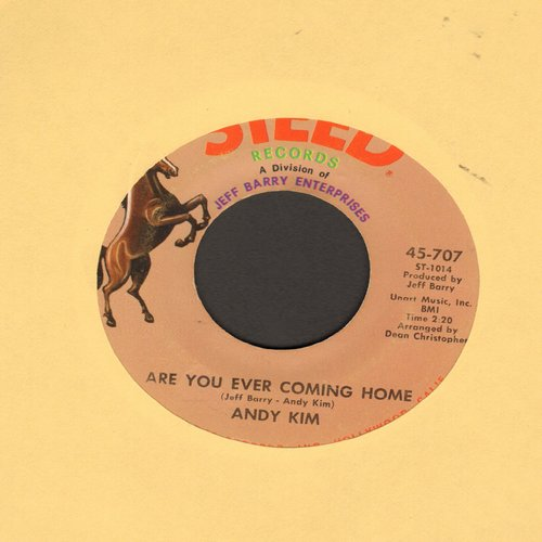 Kim, Andy - Are You Ever Coming Home?/How'd We Ever Get This Way - EX8/ - 45 rpm Records