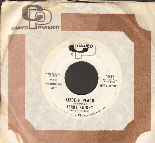 Knight, Terry - Lizbeth Peach/Forever And A Day (DJ advance pressing with Cameo company sleeve) - NM9/ - 45 rpm Records
