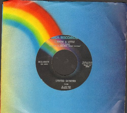 Lynyrd Skynyrd - What's Your Name/I Know A Little - VG7/ - 45 rpm Records
