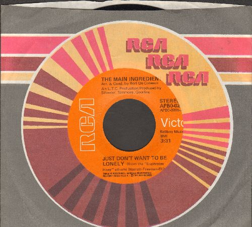 Main Ingredient - Just Don't Want To Be Lonely/Goodbye My Love (with RCA company sleeve) - EX8/ - 45 rpm Records