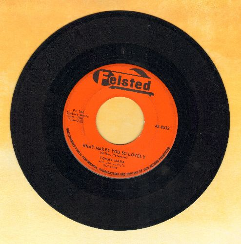 Mara, Tommy - What Makes You So Lovely/Where The Blue Of The Night - EX8/ - 45 rpm Records