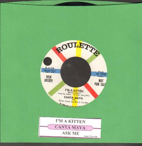 Canta Maya - I'm A Kitten/Ask Me (DJ advance pressing with juke box label) - NM9/ - 45 rpm Records