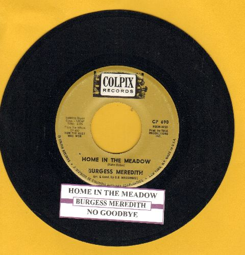 Meredith, Burgess - Home In The Meadow/No Goodby  - EX8/ - 45 rpm Records