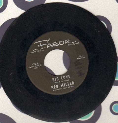 Miller, Ned - Big Love/Sunday Morning Tears - EX8/ - 45 rpm Records