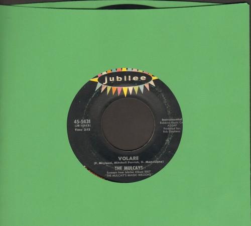 Mulcays - Volare/Fascination - EX8/ - 45 rpm Records