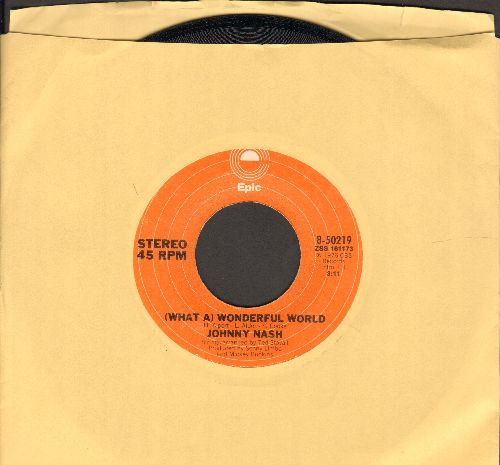 Nash, Johnny - (What A) Wonderful World/Rock It Baby (Baby We've Got A Date) - EX8/ - 45 rpm Records