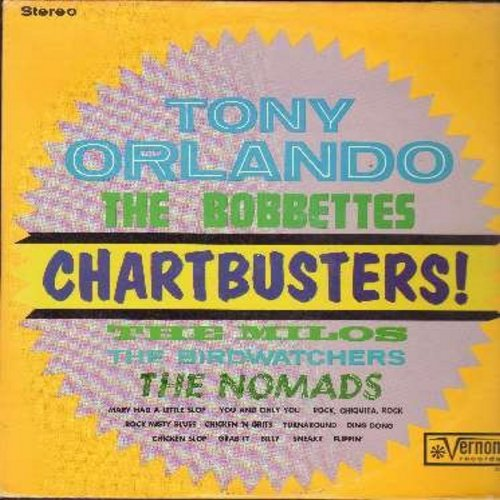 Bobbettes, Nomads, Birdwatchers, others - Chartbusters!: Ding Dong, Chicken 'N Grits, Chicken Slop, Billy, Rock Chiquita Rock, Grab It (Vinyl STEREO LP record) - EX8/EX8 - LP Records