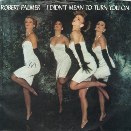 Palmer, Robert - I Didn't Mean To Turn You On/Get It Through Your Heart (with picture sleeve) - NM9/VG7 - 45 rpm Records