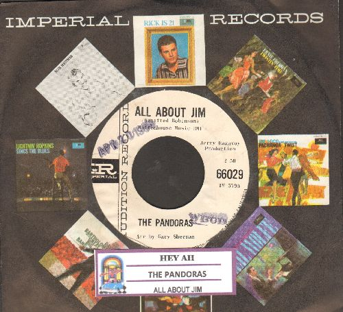 Pandoras - Hey Ah/All About Jim (DJ advance pressing with juke box label and vintage Imperial company sleeve) - NM9/ - 45 rpm Records