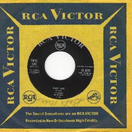 Pavone, Rita - Amore Twist/La Partita Di Pallone (Italian Pressing with RCA company sleeve) (sol) - EX8/ - 45 rpm Records