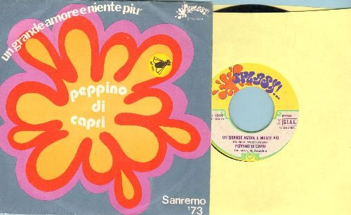 Di Capri, Peppino - Un Grande Amore E Niente Piu (Entry in 1973 San Remo Song Festival)/Per Favore Non Gridare (Italian Pressing with picture sleeve, sung in Italian) - VG6/EX8 - 45 rpm Records