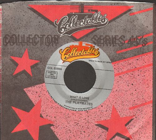 Playmates - What Is Love? (5 Feet Of Heaven & A Pony-Tail)/Wait For Me (double-hit re-issue with Collectables company sleeve) - M10/ - 45 rpm Records