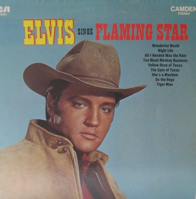 Presley, Elvis - Elvis Sings Flaming Star: Wonderful World, Tiger Man, Too Much Monkey Business, Yellow Rose Of Texas (Vinyl STEREO LP record, re-issue) - NM9/NM9 - LP Records