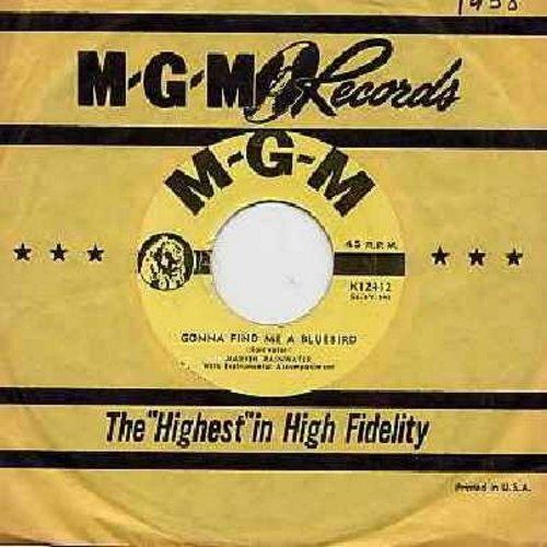 Rainwater, Marvin - Gonna Find Me A Bluebird/So You Think You've Got Troubles (with MGM company sleeve) - EX8/ - 45 rpm Records