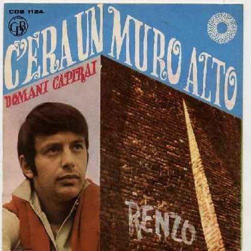 Renzo - C'era Un Muro Alto/Domani Capirai (Italian Pressing with picture sleeve, sung in Italian) - NM9/EX8 - 45 rpm Records
