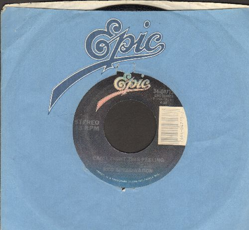 REO Speedwagon - Can't Fight The Feeling/Break His Spell (with Epic company sleeve) - EX8/ - 45 rpm Records
