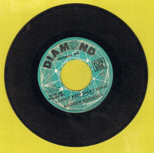 Robinson, Andrew - I Can't Keep Mary Home/After The Fall (DJ advance pressing) - VG7/ - 45 rpm Records