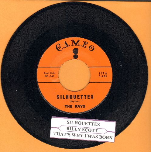 Rays - Silhouettes/Daddy Cool (orange label with juke box label) - NM9/ - 45 rpm Records