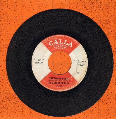 Sandpebbles - Never My Love/Who Knows What Will Be Tomorrow - VG7/ - 45 rpm Records