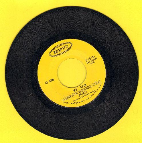 Spirit - Mr. Skin/Nature's Way - EX8/ - 45 rpm Records