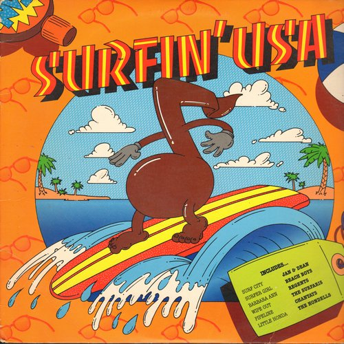 Jan & Dean, Beach Boys, Regents, others - Surfin' USA: Surfer Girl, Wipe Out, Little Honda, Barbara Ann, Surfin' Bird (Vinyl LP record) - EX8/EX8 - LP Records